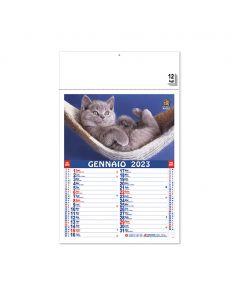 PET - Wall calendar cats & dogs