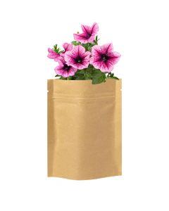 SOBER - flower planting kit